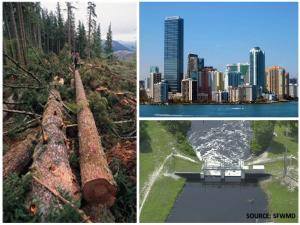 Logging, population density, and flood-control projects