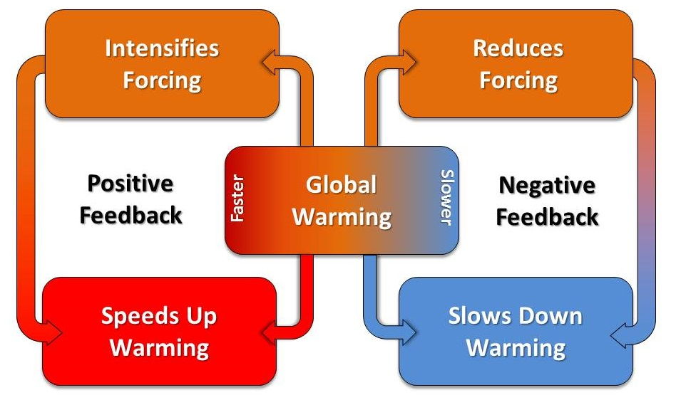 Positive and Negative Climate Feedbacks